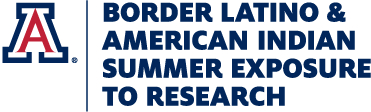 Border Latino & American Indian Summer Exposure to Research